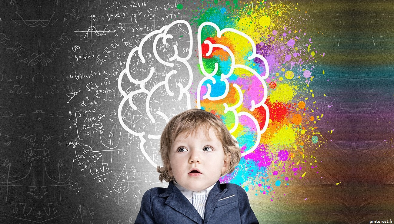Le développement d'une région cérébrale, l'amygdale, et de ses connexions au reste du cerveau avant l'âge de deux ans prédit les aptitudes émotionnelles et cognitives ultérieures des enfants. La mise en place de l'éducation positive est importante à cet âge là.
