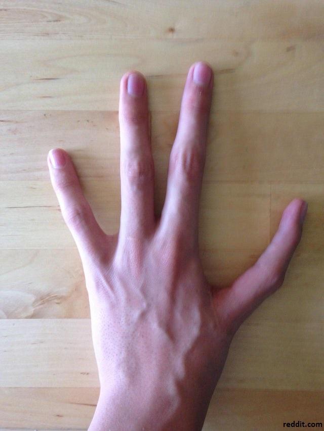 quatre doigts